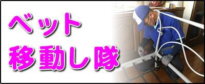 【便利屋】暮らしなんでもお助け隊 福岡西店にて何でも屋・便利屋サービス「ベット移動し隊」は、遠く離れた福岡のご実家の2階のお部屋にあるベットを1階に下してほしいというご要望にお応えしています。